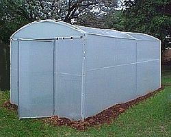 Walk-in greenhouse-5